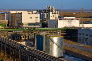 國三大化肥廠排行榜:青海鹽湖第三個都在西部
