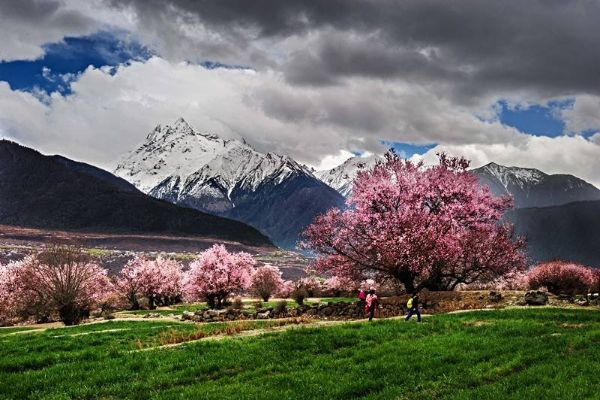 3-4月国内最佳旅游地排行榜