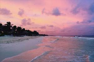免费看成年人视频大全免费看成年人视频最美丽的海滩 图伦相当壮观桑丘岛美丽迷人