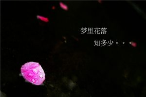郭敬明五部经典小说 第一很特别第三还被拍成电影
