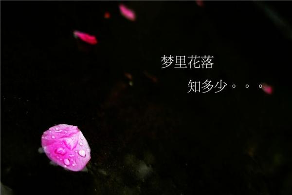 郭敬明五部经典小说