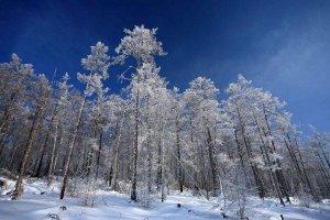 全国最冷的十个城市排名 牙克石最低可达零下52℃