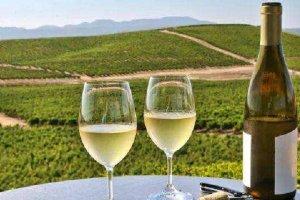 十大入门白葡萄酒推荐:赛美蓉第4,第3德国葡萄酒的女王