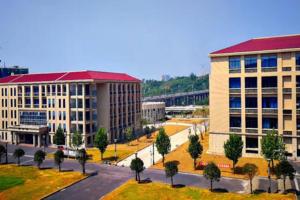 武汉十大职业培训机构:北大青鸟第三,新东方烹饪上榜