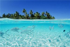 国外海岛游排名 斐济岛是度假胜地 巴厘岛是世外桃源