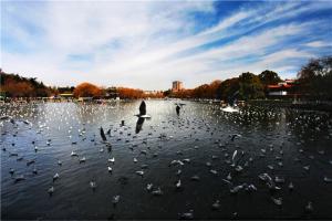 夏季旅游最完美的五个城市 桂林自然景观独特 丽江景点众多