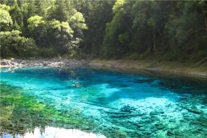 2020四川网红景点排名 熊猫基地独有 五彩池与大自然亲近