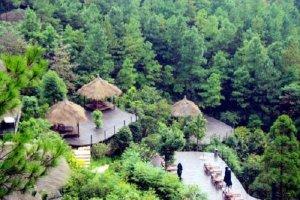 莫干山最有名的5家民宿:大樂之野上榜,第2中法文化結合