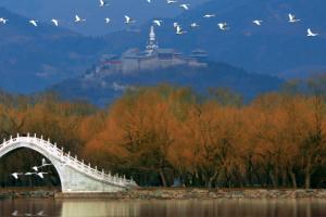 中国十大最美景点,武陵源进入前三 颐和园是古人智慧结晶