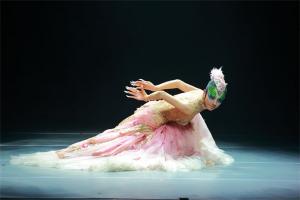 中国十大舞蹈家:黄豆豆上榜,她在芭蕾上造诣高