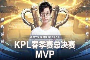 王者荣耀十大战队排行榜  TS为2020世冠总冠军,第二是老牌战队