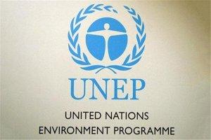 世界十大慈善基金会排行榜:全球基金上榜,第一负责环境事业