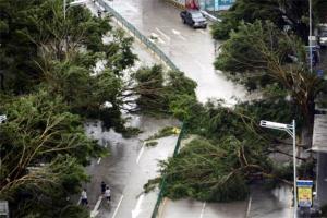 中国历史上最强台风排行:桑美上榜,第一使城市内部变海