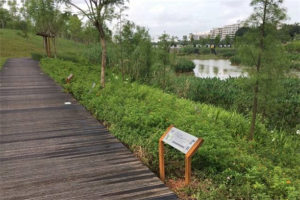 广州十大公园排行榜:海珠湖上榜,第十适合培养亲子感情