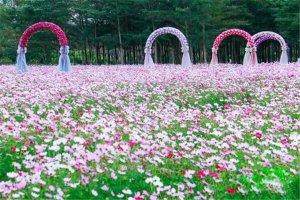 惠州十大熱門游樂場排名:金鐘園第5,第7室內兒童樂園