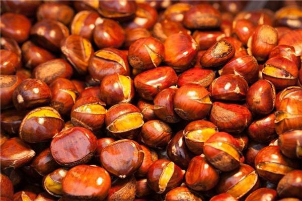 天津本地人最喜欢的美食推荐