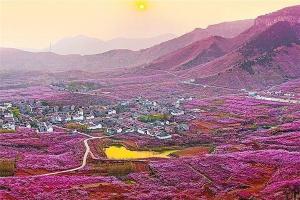 臨沂大風景區排行榜:黃山公園榜櫻之崮田園第