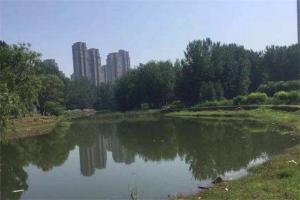 焦作大公園廣場排行榜:濱河公園榜第八還在修建