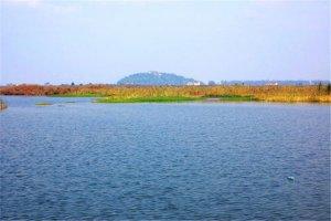 常州十大公园广场排名:青枫公园上榜,第三湿地为主