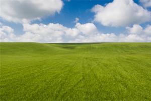 滨州十大玩乐中心排行榜:瑞香农家院上榜,大草原第一