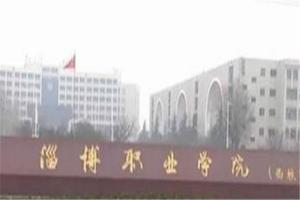 山东较好的职业学院排名:滨州职业学院上榜,淄博职业学院第一