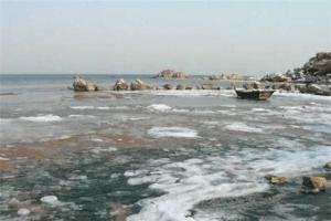 秦皇島北戴河十大最好玩的景點:怪樓奇園上榜,第三是觀鳥地