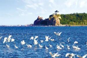 中国十大绝佳养老圣地:丹东上榜,第五是东北滨海城市