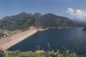 世界最大水库十大排名:古里水库上榜,第六位于非洲