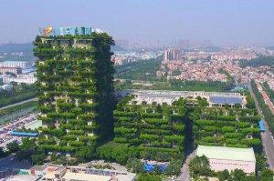 2021年1-2月中国房企销售额排行榜前十名 碧桂园第一,万科、恒大上榜