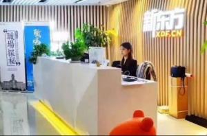 2021广州留学英语培训机构排行榜 琥珀教育上榜,新东方第一