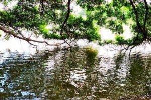 中国境内十大最邪门的地方排行榜 哑蛙湖上榜,第九非常离奇