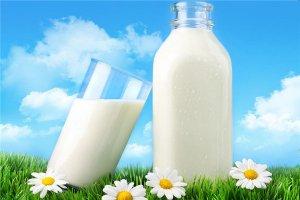 鮮奶吧加盟店10大品牌:與芳鮮奶上榜,一朵奶牛第一