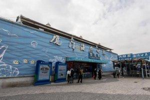 中國十大海洋館,上海上榜兩座,第一營業最早