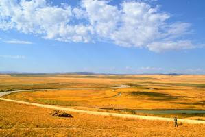 中國十大最美草原,內蒙古上榜三個,第一是牧草王國