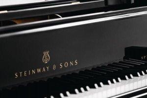 鋼琴十大品牌排名,珠江鋼琴上榜,第二憑借簧管風琴起家