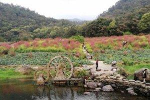 广州十大自驾游景点,白云山上榜,第二被誉为长寿村
