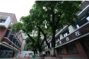 重庆市公立小学排名榜 重庆市育英小学校上榜沙坪坝小学历史悠久